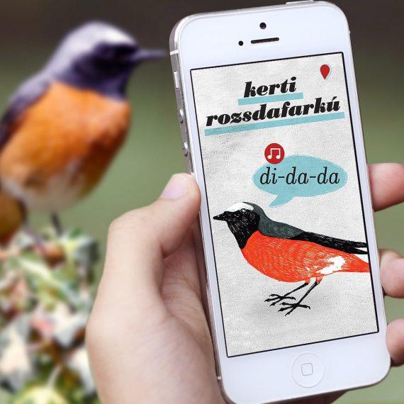 birding-app-estudio-nido-0-square